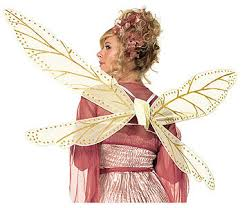 dragonfly wings costume