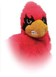 cardinal bird costume