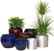 silver plant pot
