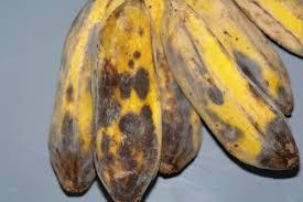 banana mold