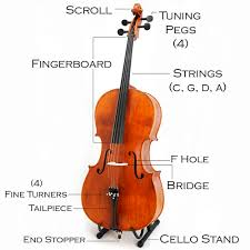 cello music instrument
