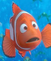 cartoon clown fish