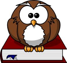 cartoon owl picture