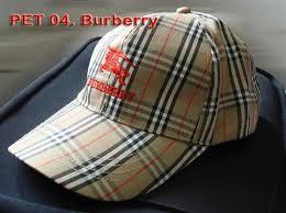 burberry pet