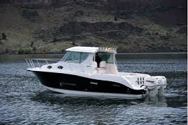 seaswirl boat