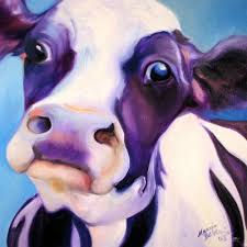 funny cow photo