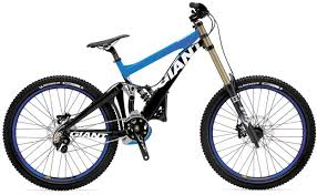 2010 giant glory dh