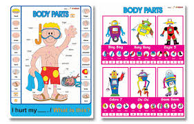 learning body parts for kids