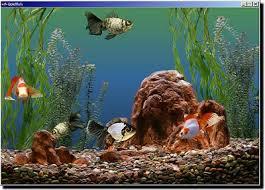gold fish screensaver