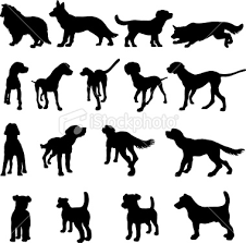 dog breed silhouette
