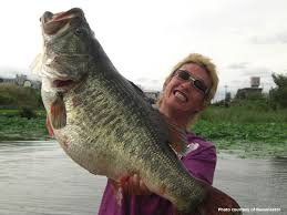 largemouth bass records