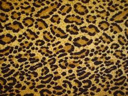 leopard print unitard