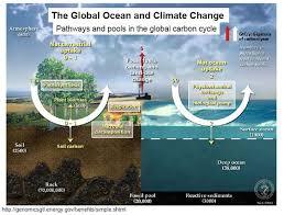 climate change oceans