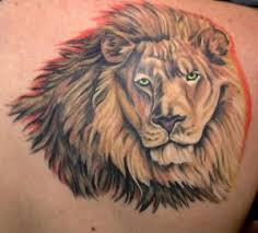lion tattoos pictures