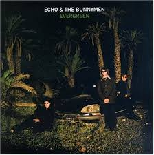 Echo & The Bunnymen - Evergreen
