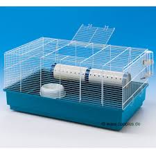 rodent caging