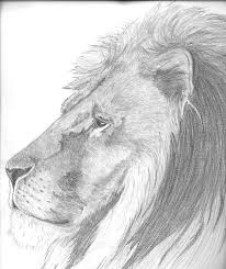 king draw