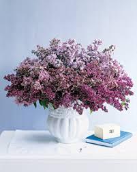 lilac arrangements