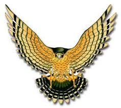 free falcon clip art