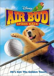 air buddy movie