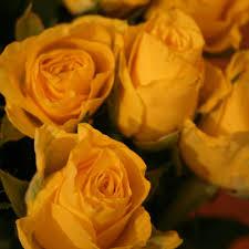 golden anniversary flowers