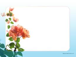 flower border wallpaper