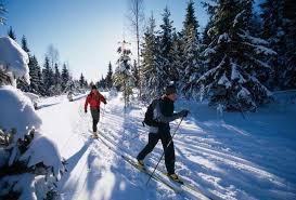 cross country skiing photos