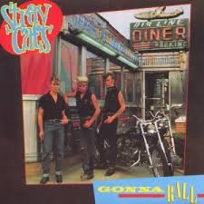 stray cats pictures