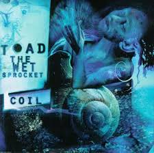 Toad The Wet Sprocket - Rings