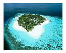 fesdu fun island