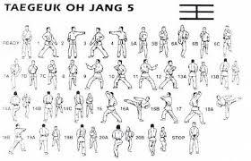 tae kwon do federation