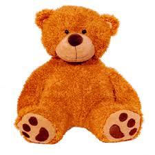 cuddly bears