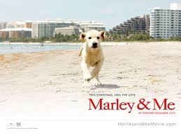 marley and me 2