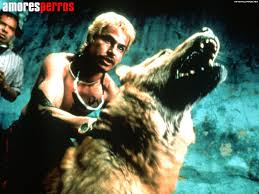 amores perros movie