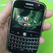 palm blackberry
