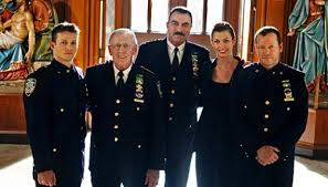 show Blue Bloods and found