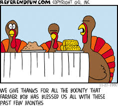 happy thanksgiving cartoons