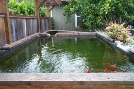 raised pond design