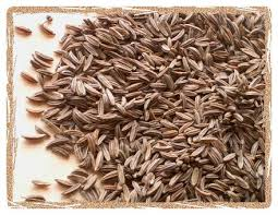 bread seeds