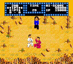 karate video game
