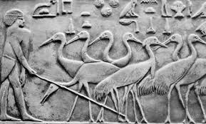 egyptian bas relief