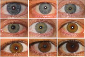 eye color blue