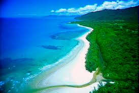 australia cape tribulation