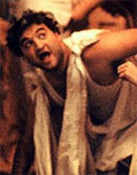 animal house toga party