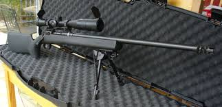savage model 10 tactical