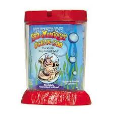 picture of a sea monkey