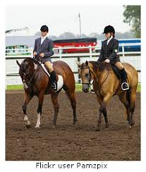 english horse show clothes
