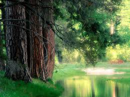national parks wallpaper