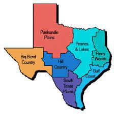 7 regions