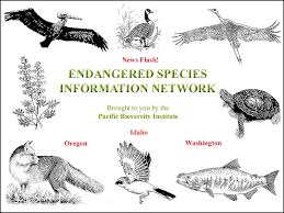 pictures of endangered species
